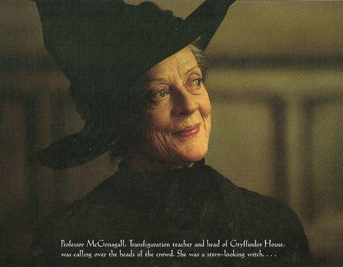 The Professor's Apprentice(Harry Potter fanfiction)