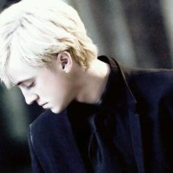 Draco Malfoy Reader