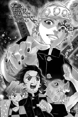 Chapter Xxviii Operation Entertainment District Bystander Tanjiro Kamado X Reader Demon Slayer Kimetsu No Yaiba Then he had to give up his position as a hashira member and retire to. bystander tanjiro kamado x reader