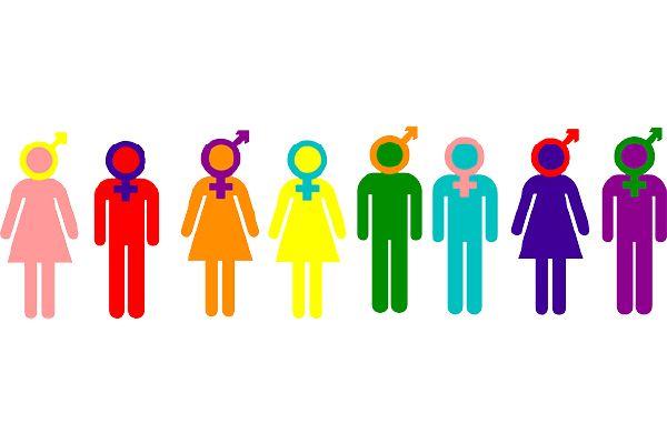 What s your gender identity? - Quiz